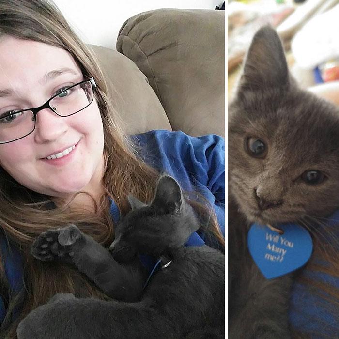 1544193765-8888-girlfriend-tiny-rescue-cat-2.jpg (700×700)